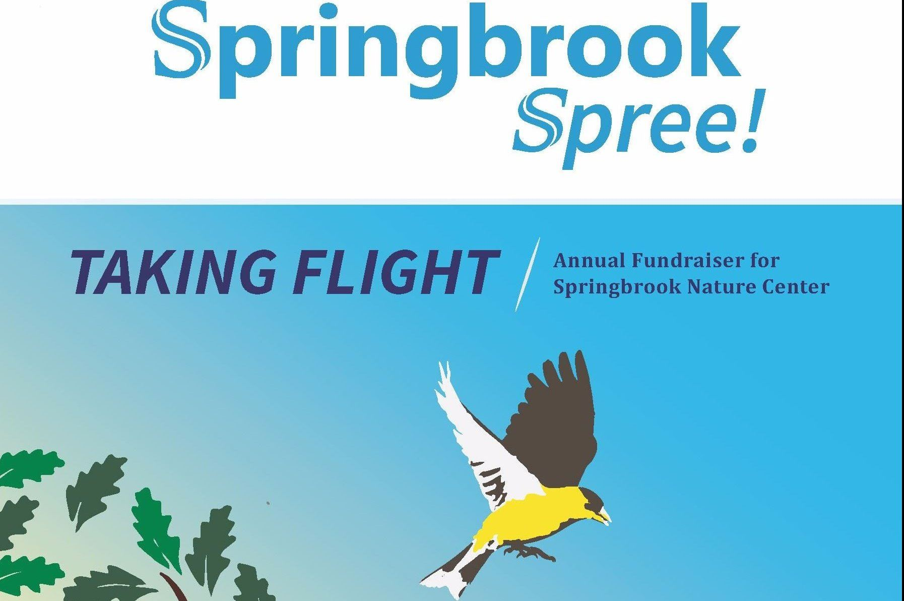 Springbrook Spree flyer